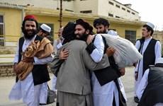 Вьетнам поддерживает всеобъемлющий мирный процесс в Афганистане