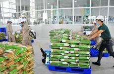 Вьетнамский рис завоевывает мировой рынок