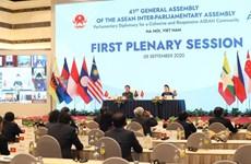AIPA-41 провела первое пленарное заседание