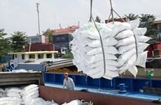 Вьетнам стремится увеличить экспорт риса в Африку