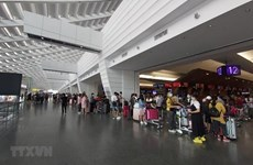 Более 240 вьетнамских граждан были доставлены домой из Малайзии