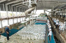 Производство карбамида на заводе по производству удобрений в Камау за 10 лет составило 7 миллионов тонн
