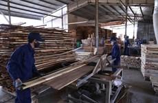 Экспорт древесины Биньдиня вырос на 21%, несмотря на пандемию