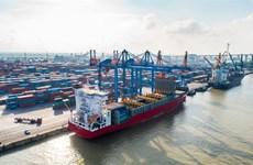Морские портовые компании меньше всего пострадали от пандемии