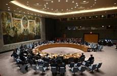 Вьетнам поддерживает усилия ООН и АС по обеспечению мира в Африке