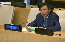 Вьетнам призывает заинтересованные стороны работать ради будущего Гаити