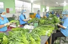 Ожидается, что экспорт фруктов и овощей восстановится после девятимесячного спада
