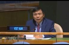 Посол: Вьетнам поддерживает реформу СБ ООН