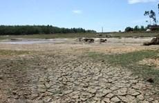 Стихийные бедствия обошлись провинции Камау в более 43 млн. долл. США