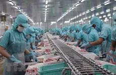 Ожидается, что в этом году экспорт пангасиуса вырастет до 1,5 млрд. долл. США