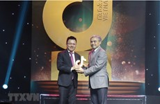 """Проект ВИА по борьбе с фейковыми новостями получил награду """"TikTok Awards Vietnam 2020"""""""