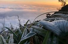 Сильные холода поразили северные и центральные районы