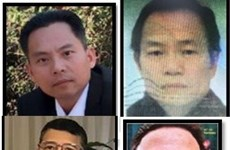 Министерство общественной безопасности: «Вьетнамская династия» («Triều đại Việt») - террористическая организация