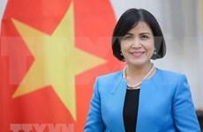 Вьетнам принял участие в 7-й сессии по обзору торговой политики Индии