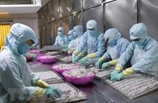 Вьетнамские компании используют UKVFTA для продвижения экспорта в Великобританию