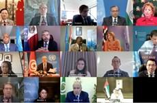 Вьетнамский дипломат подчеркнул важность сотрудничества ООН с Лигой арабских государств