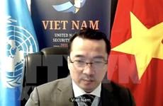Вьетнам призывает к единству международного сообщества в поддержке Сирии