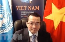 Вьетнам подтверждает приверженность международному сотрудничеству в борьбе с терроризмом