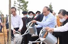 """Премьер-министр запустил кампанию """"Тэт посадки деревьев"""" по случаю лунного Нового года 2021 в провинции Туенкуанг"""