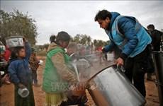 Вьетнам разделяет обеспокоенность об ухудшении гуманитарной ситуации в Сирии