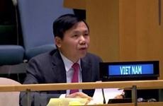 Вьетнам призывает международное сообщество сотрудничать с АСЕАН в вопросе Мьянмы