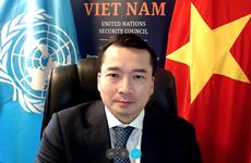 Вьетнам поддерживает сотрудничество ООН и ОБСЕ в решении общих проблем