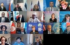 Вьетнам председательствует на заседании СБ ООН по химическому оружию в Сирии