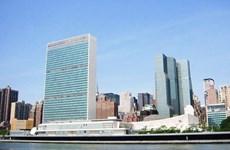 Третий вьетнамский военный будет работать в штаб-квартире ООН
