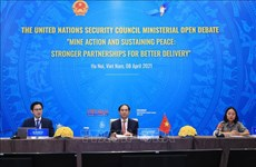 Вьетнам и СБ ООН: Укрепление международного сотрудничества в ликвидации последствий неразорвавшихся мин и боеприпасов