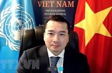 Вьетнам и Совет Безопасности ООН: принятие двух резолюций по Ливии, обсуждение против распространения оружия массового уничто