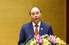 Вьетнам прилагает усилия для внесения своего вклада в поддержание международного мира и безопасности