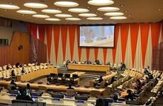 Итоговое заседание месяца председательства Вьетнама Совета Безопасности ООН