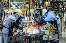 Немецкие фирмы с оптимизмом смотрят на экономику Вьетнама