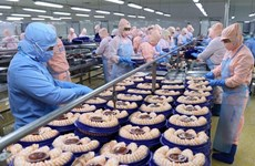 Вьетнам надеется расширить экспорт водной продукции в условиях пандемии COVID-19
