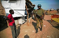 Вьетнам призывает продвигать переходный процесс в Судане