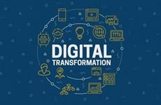Решения для цифровой трансформации Вьетнама удостоены премии Stevie Awards