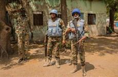 Вьетнам и Совет Безопасности: Вьетнам осуждает целенаправленные нападения на миротворцев