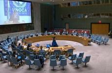 Вьетнам и Совет Безопасности: Вьетнам поддерживает диалог в решении проблемы терроризма в Центральной Африке