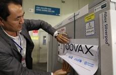 Более 11 млрд. донгов выделено на финансирование COVAX