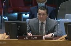 Вьетнам призывает к расширению сотрудничества для решения проблемы нестабильности в Центральноафриканской Республике и Сирии