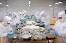 Камау сообщил о росте экспорта креветок в первом полугодии, несмотря на пандемию