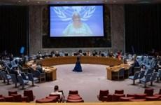 Вьетнам выступает за примирение и прекращает насилие в Демократической Республике Конго