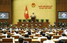Первая сессия НС 15-го созыв: поддержать организационную структуру правительства