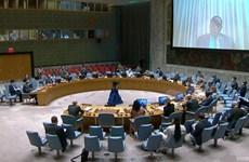 Вьетнам выразил надежду, что правительство Сомали будет тесно сотрудничать с АМИСОМ