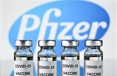 Правительство согласилось купить около 20 миллионов доз вакцины Pfizer против COVID-19