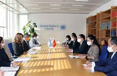 Председатель НС Вьетнама приветствует вклад ООН в развитие Вьетнама
