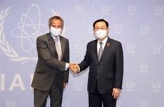 Председатель НС Выонг Динь Хюэ встретился с генеральным директором МАГАТЭ