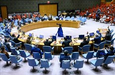 Незаконная торговля стрелковым оружием и легкими вооружениями отрицательно сказывается на мире и безопасности