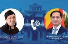 Министр иностранных дел Буй Тхань Шон провел телефонный разговор с министром иностранных дел Новой Зеландии Нанаей Махутой