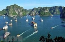 Вице-премьер просит туристический сектор предпринять решительные шаги для открытия